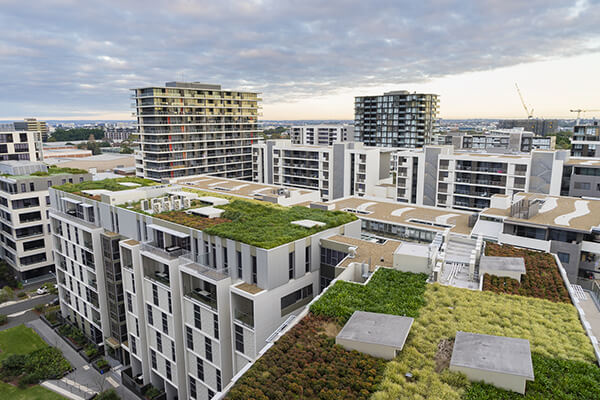 View of green roofing systems on modern buildings and residential units.